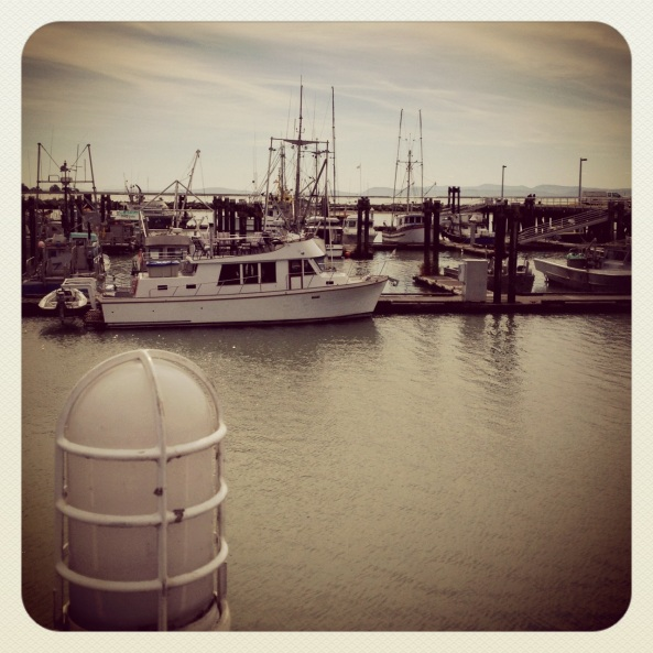 The harbor in Steveston, down the street from the shop