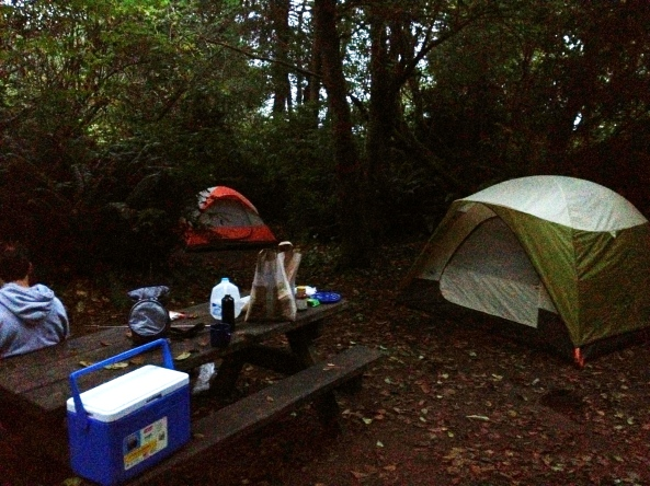 Camping in the Redwoods in California